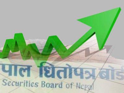 नेप्सेमा शेयर ७९.४३ प्रतिशत बृद्धि