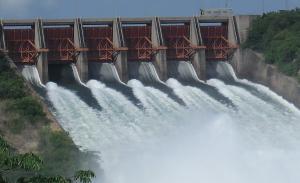 निकुञ्जभित्र ठूला जलविद्युत् बनाउन रोक
